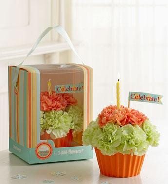 Cupcake in Bloom - orange & green in Burlington NJ, Stein Your Florist