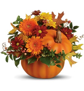 Teleflora's Somethin' Pumpkin in Oklahoma City OK, Array of Flowers & Gifts