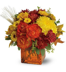 Teleflora's Autumn Expression in Phoenix AZ, La Paloma Flowers
