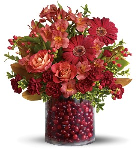 Teleflora's Cranberry Surprise in Grass Lake MI, Designs By Judy