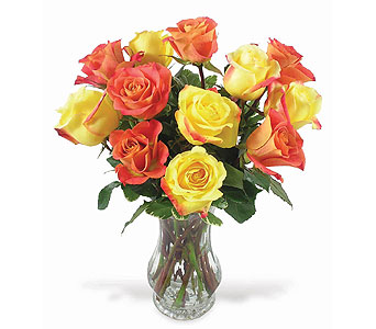 Fall Roses in Big Rapids MI, Patterson's Flowers, Inc.