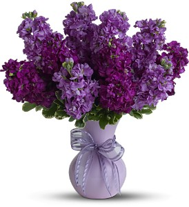 Teleflora's Visions of Violet - Deluxe in Glendale AZ, Blooming Bouquets