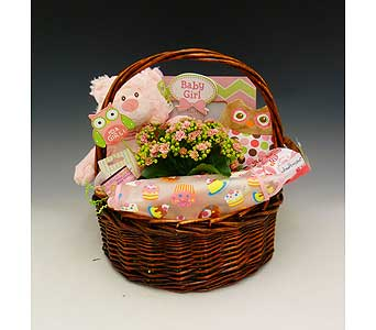 Baby Girl Basket in Kirkland WA, Fena Flowers, Inc.