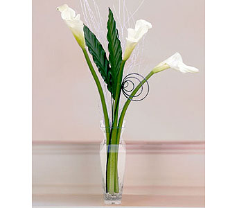 Contemporary Callas in Pleasanton TX, Pleasanton Floral