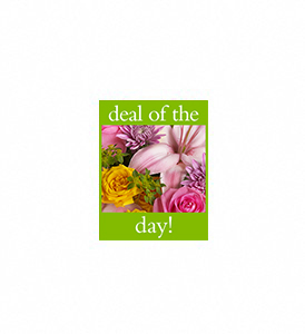 Deal of the Day Bouquet in Charleston WV, Food Among The Flowers