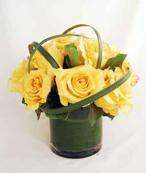 Yellow Rose Cylinder in New York NY, Embassy Florist, Inc.
