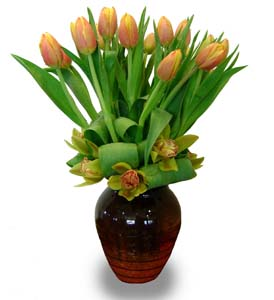 Elegant Tulips & Orchids in Sylmar CA, Saint Germain Flowers Inc.