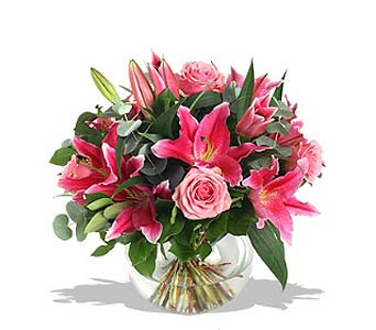 Super Star Pink in Fairfield CT, Town and Country Florist