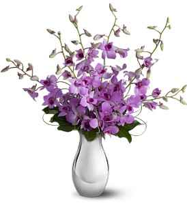 Teleflora's Orchid Reflections in New York NY, New York Best Florist