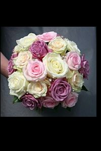 Mixed Roses in Guelph ON, Patti's Flower Boutique