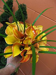 Mango Calla Bouquet in Guelph ON, Patti's Flower Boutique
