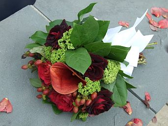Red Calla in Guelph ON, Patti's Flower Boutique
