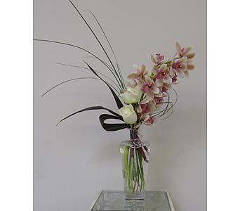 Alluring Orchids in Saskatoon SK, Carriage House Florists