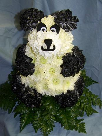 Panda Bear in Crown Point IN, Debbie's Designs