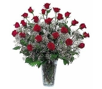 Wow Her 24 roses with plush, candy and balloon in Sanford FL, Sanford Flower Shop, Inc.
