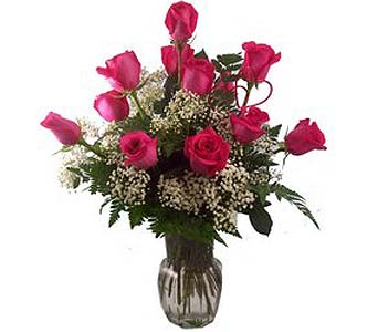 Dazzle Dozen 12 Medium Stem Hot Pink Roses in Port St Lucie FL, Flowers By Susan