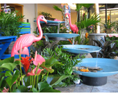 Huddart''s Flamingo Oasis in Salt Lake City UT, Huddart Floral