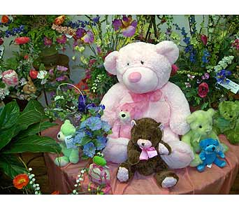 Plush Gifts in Dry Ridge KY, Ivy Leaf Florist