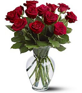 1 Dozen Red Regular Stem Roses Arranged in Wading River NY, Forte's Wading River Florist