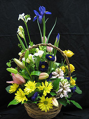 Spring basket in Chapel Hill NC, Floral Expressions and Gifts