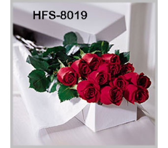 Classic 1 Dozen Long-Stemmed Roses - Red - Boxed in Fairfield CT, Papa and Sons