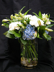 On the rocks in Chapel Hill NC, Floral Expressions and Gifts