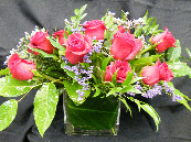 Cube roses in Chapel Hill NC, Floral Expressions and Gifts