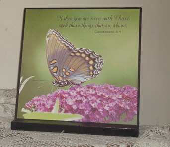 Butterfly plaque in Madisonville KY, Exotic Florist & Gifts