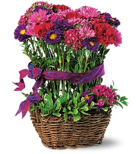 Basket of Smiles in Norridge IL, Flower Fantasy