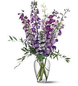 Delphinium Dreams in Modesto, Riverbank & Salida CA, Rose Garden Florist