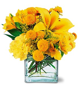 Sunshine Thoughts in Oakville ON, Oakville Florist Shop