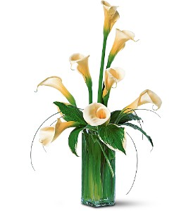 White Callas in Gautier MS, Flower Patch Florist & Gifts