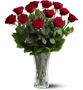 A Dozen Premium Red Roses in Bloomington IL, Forget Me Not Flowers