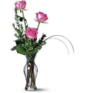Tender Trio in Meriden CT, Rose Flowers & Gifts