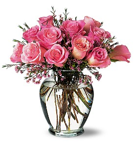 A Pretty Pink Dozen in Fredonia NY, Fresh & Fancy Flowers & Gifts