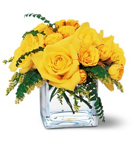 Yellow Rose Bravo! in Modesto, Riverbank & Salida CA, Rose Garden Florist
