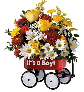 Teleflora's Baby's First Wagon - Boy in Orland Park IL, Orland Park Flower Shop