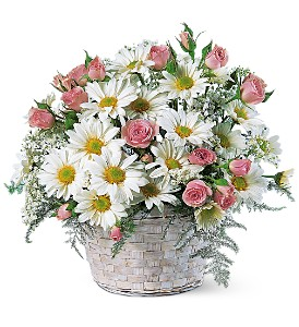 Posy Basket in Oklahoma City OK, Array of Flowers & Gifts