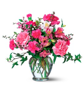 Cheerful Carnations in Buffalo Grove IL, Blooming Grove Flowers & Gifts