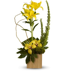 Teleflora's Bamboo Tropics in Rochester NY, Fabulous Flowers and Gifts