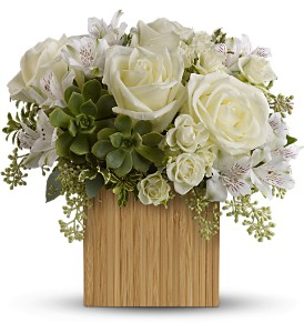 Teleflora's Bamboo Beauty in Burlington NJ, Stein Your Florist