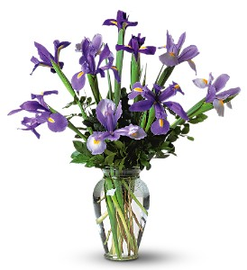 Incredible Iris in Crafton PA, Sisters Floral Designs