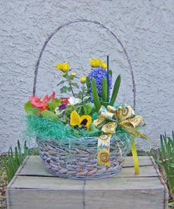 Spring Planted Basket in Royersford PA, Three Peas In A Pod Florist