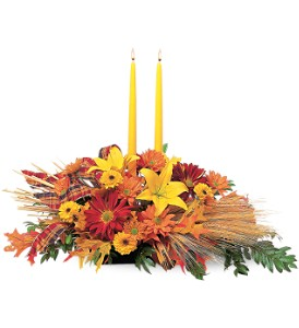 Country Harvest in Tyler TX, Country Florist & Gifts