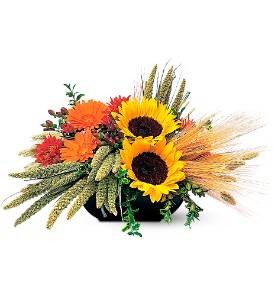 Sunflower Harvest in Tyler TX, Country Florist & Gifts