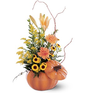 Pumpkin Delight in McKees Rocks PA, Muzik's Floral & Gifts
