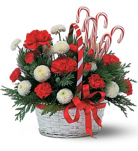 Candy Cane Basket in Fredonia NY, Fresh & Fancy Flowers & Gifts