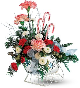 Teleflora's Sleigh in Oklahoma City OK, Array of Flowers & Gifts