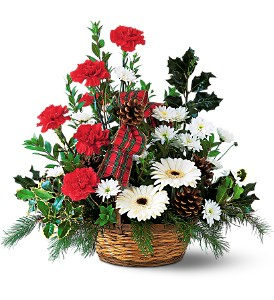 Winter Wonderland Basket in Cohasset MA, ExoticFlowers.biz