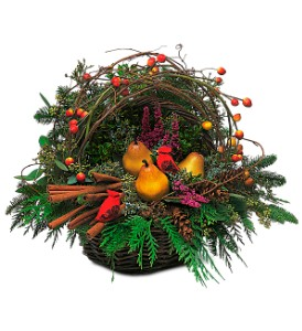 Winter Greens Basket in San Antonio TX, Allen's Flowers & Gifts